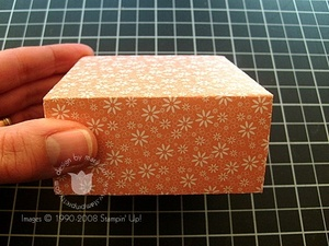 Stampin_up_box_7