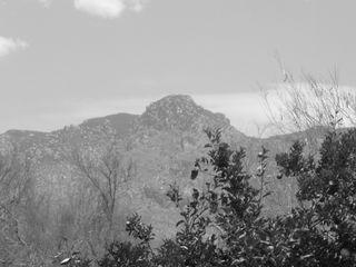 Mountain black and white