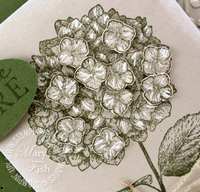 Stampin up pals paper arts hydrangea