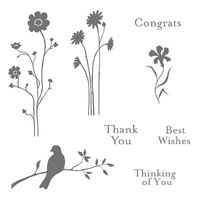 Silhouette sentiments stampin pretty