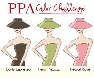 PPA 71 Celebrity Color Challenge December 2 2010