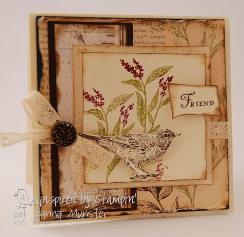 Stampin pretty guest stamper joanna munster