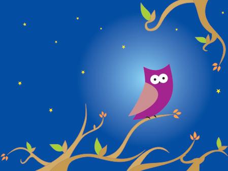 The_night_owl
