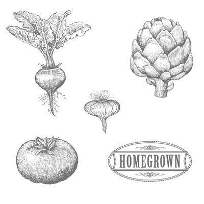 Homegrown rubber stamps stampin up