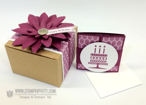 Stampin up demonstrators video tutorial blog card ideas punch catalog order online
