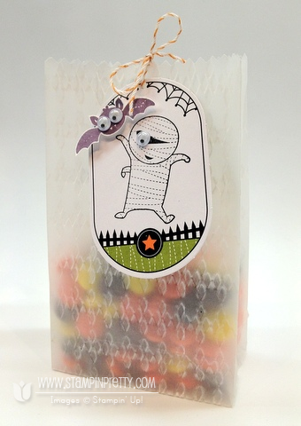Stampin up demonstrator blog video tutorial halloween ghoulish googlies treat bag
