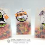 Stampin' Up! Embossed Halloween Treat Bags