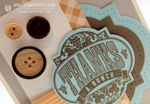 Stampin up stampinup stamp it card idea blog punch big shot framelilts masculine