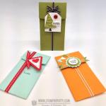 Stampin' Up! Petite Pocket Gift Card Trio