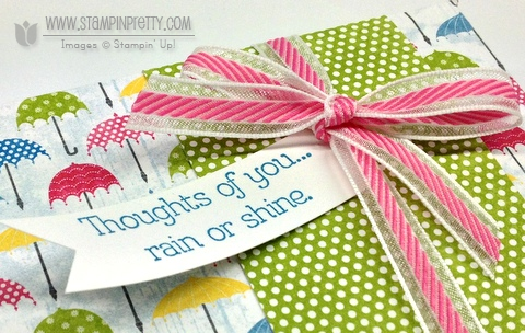 Stampin up stampinup stamp it spring catalog punch card ideas demonstrator rain or shine nugget box hershey