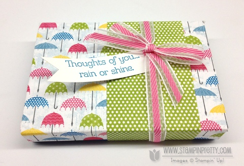 Stampin up stampinup stamp it spring catalog punch card ideas demonstrator rain or shine nugget box hersheys