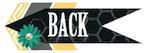 2013janhop_back