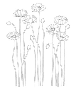 Stampin up stampinup pretty my digital studio download poppies