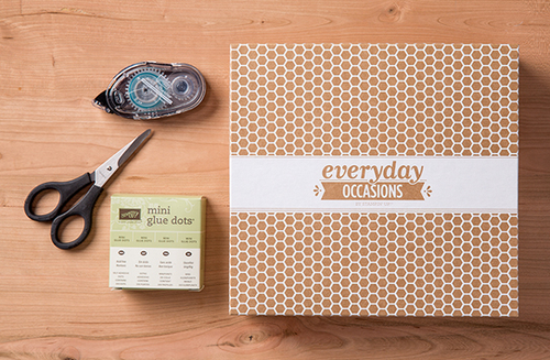 Stampin up everyday occasions bundle