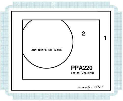 PPA220