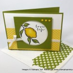 A Sneak Peek of Stampin' Up! A Happy Thing