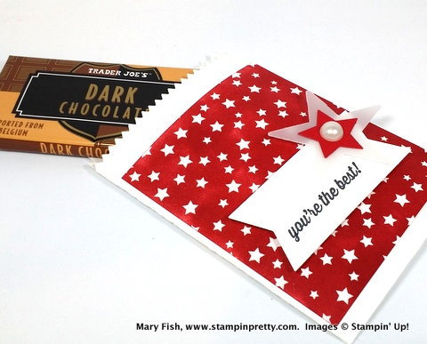 Stampinup stamping pretty mary fish mini treat bag 1