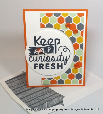 Stampin up stampinup stamping pretty mary fish blog adventure awaits 1