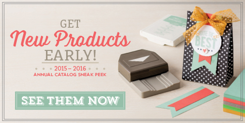 stampin up stampinup sneak peek annual catalog