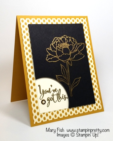 Stampin' Up! You've Got This stamp set sympathy card by Mary Fish Stampin' Pretty