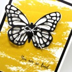 Big Shot Bold Butterfly Card & MORE Deals!