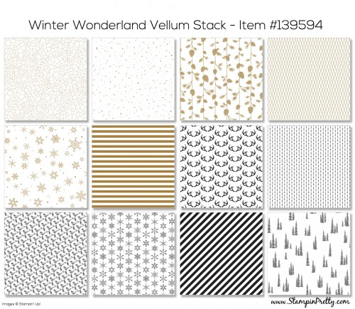 Stampin Up Winter Wonderland Designer Vellum Stack