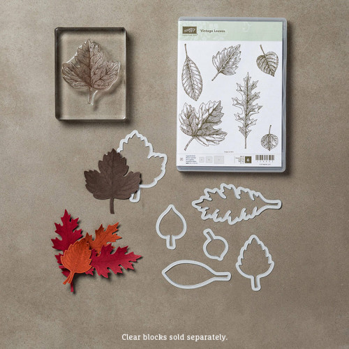 Stampin Up Vintage Leaves Leaflits Framelits Dies