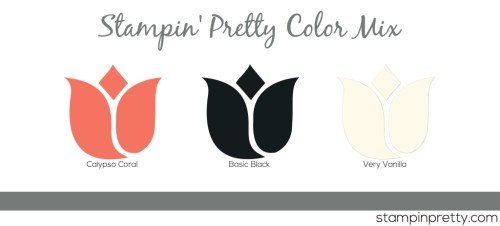 SP Color Mix Coral Black Vanilla