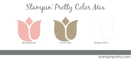 Stampin' Pretty Color Mix Blush Crumb White