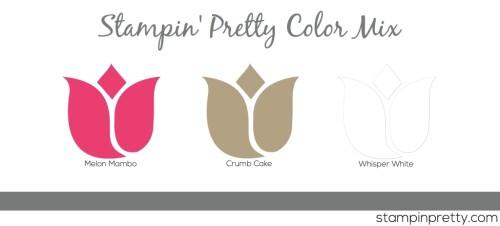 Stampin' Pretty Color Mix Mambo Crumb White