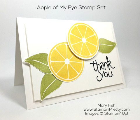 Stampin Up Apple of My Eye Thank You Card By Mary Fish