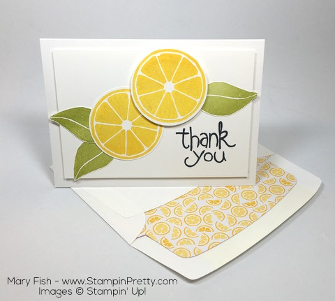 Stampin Up Apple of My Eye Thank You Card & Envelope Liner By Mary Fish