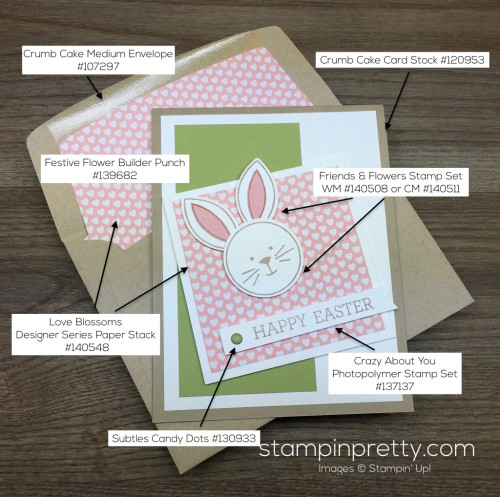Stampin Up Easter Bunny Card Idea Envelope Liner - Mary Fish StampinUp Product List