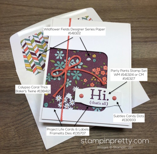 Stampin Up Party Pants Hello Card & Envelope by Mary Fish StampinUp Supply List