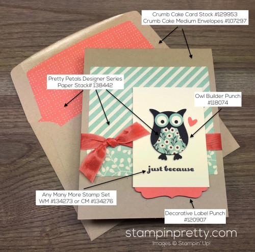 Stampin Up Owl Builder Punch Just Because Card & Envelope Liner By Mary Fish StampinUp Supply List