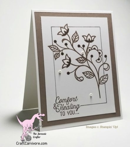 Pals Paper Crafting Card Ideas Amy Hoptay Mary Fish Stampin Pretty StampinUp