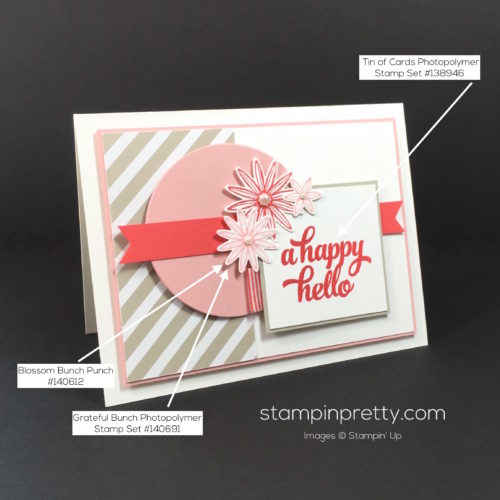Stampin Up Tin of Cards Card Ideas - Mary Fish Stampinup