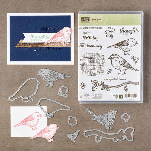 Stampin Up Bird Bundle