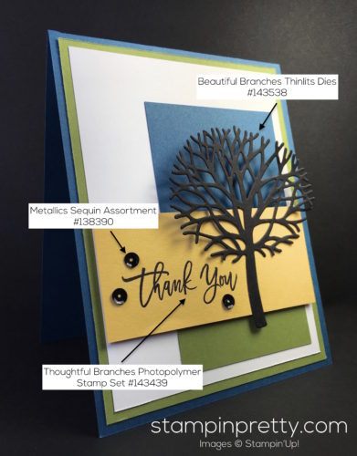 Stampin Up Thoughtful Branches Thank You Card - Mary Fish StampinUp Supply List