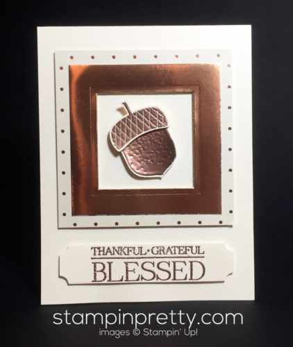 stampin-up-acorny-thank-you-thank-you-cards-mary-fish-stampinup
