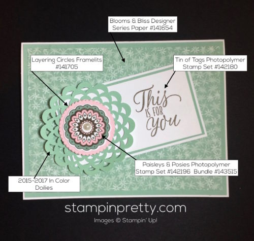 stampin-up-paisleys-and-posies-love-and-friendship-cards-ideas-mary-fish-stampinup