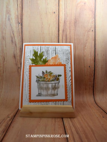 pals-paper-crafting-card-ideas-pamela-sadler-mary-fish-stampin-pretty-stampinup