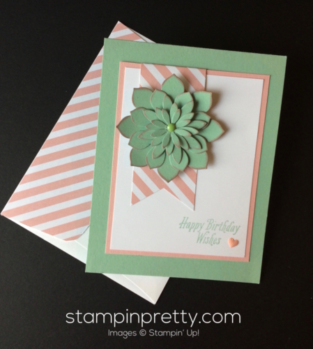 Stampin Up Oh So Succulent Birthday card - Mary Fish stampinup
