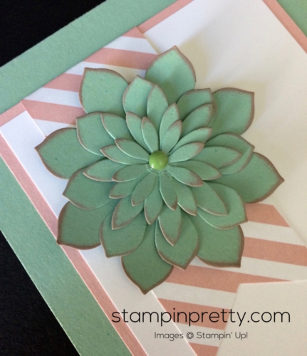Stampin Up Oh So Succulent Birthday cards idea - Mary Fish stampinup