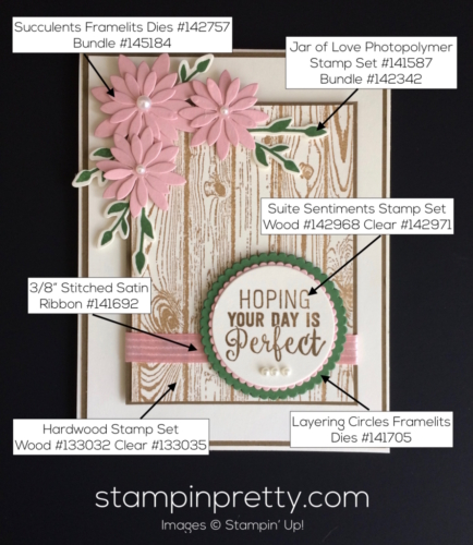 Stampin Up Oh So Succulent Birthday cards ideas - Mary Fish stampinup