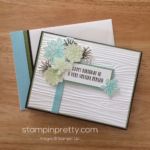 Inspired By Color & Oh So Succulent Stamp Set