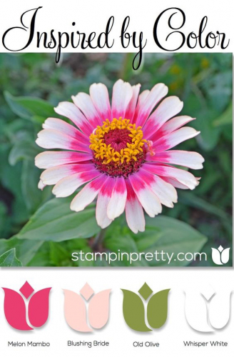 Stampinpretty Inspired by Color