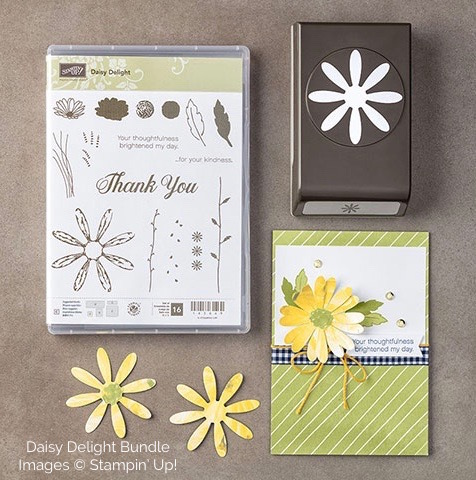 Stampin Up Daisy Delight Bundle - Mary Fish stampinup