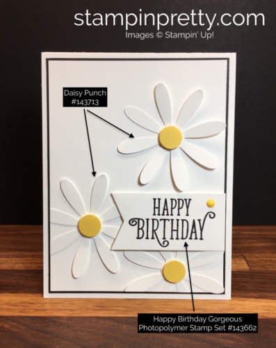 Stampin Up Daisy Punch Birthday Card Ideas - Mary Fish StampinUp Supply Lists
