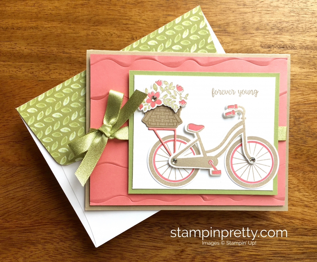 Beautiful bike ride birthday card idea stampin pretty stampin up bike ride friendship birthday card idea mary fish stampinup m4hsunfo